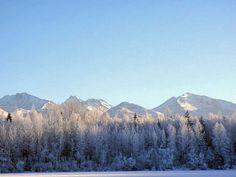 AK Winter-scape