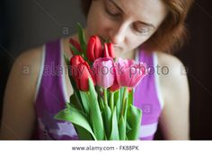 Download this stock image: Bunch of tulips in woman hands. The holiday of spring and love. International Women's Day on 8 March. Soft focus - FK88PK from Alamy's library of millions of high resolution stock photos, illustrations and vectors.