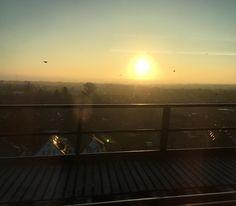 Der morgendliche Blick aus dem Zug-Fenster.  by scherzinfarkt