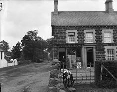 The Post Office in Pictures and the BPMA Photography Collection Irish People, Photography Exhibition, Moving Out, Post Office, Northern Ireland, 1930s, Cow, Buildings, The Past