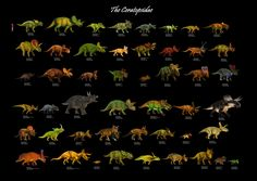 The Ceratopsidae: 48 Genera