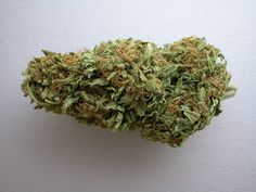 Big Bud is an indica-dominant strain developed to produce huge buds with as few leaves as possible, and it delivers on that front incredibly due to its esteemed parents Afghani and Skunk #1. Its nugs are large and dense, a dark olive green in color with fiery red pistils and a coat of snow-white trichomes. This strain is popular for growers and breeders who are looking to produce a high yield of product that has a high potency, as Big Bud generally tests around 25% THC. Effects of this…