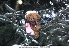 Funny brown plush toy bear dressed in knitted cap and scarf on snow-covered fir-tree branches outdoors at winter