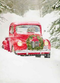 .❄❄❄❄ over the meadows and thru the woods, to grandmothers house we go...