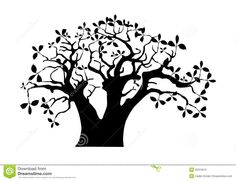 Baobab tree. African tree. Coloring book page for adult