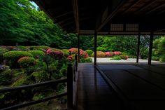 詩仙堂・サツキの頃 : 花景色-K.W.C. PhotoBlog