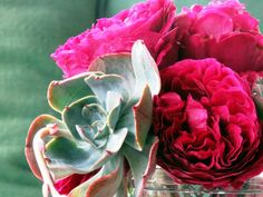 Roses and Succulents by Debra Prinzing | Flickr - Photo Sharing!