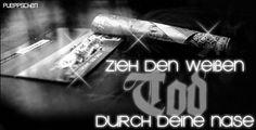 Drogen Bilder - Jappy GB Pics - Sex, Drugs & Rock n Roll - 04-zieh_den_weissen_tod_durch_die_nase.gif
