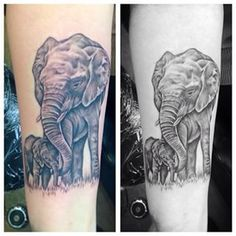 mother and baby elephant tattoos - Google Search