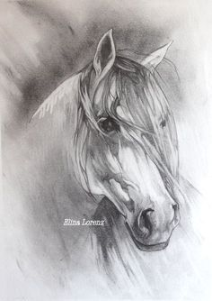 Grey Horse- Original Drawing-Room Decor- Horse Art- Decorative art- Art Gift-White and Grey-Room Decor- Christmas Gift Horse Drawings, Animal Drawings, Art Drawings, Horse Sketch, Horse Artwork, Amazing Drawings, Equine Art, Horse Pictures, Painting & Drawing