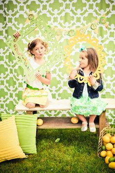 Lemon & Lime photo backdrop  |  heather lynn photographie