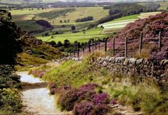 Landscape Paintings and photographs : A picture of: Derbyshire Peak District National Park Curber Edge England (UK) Peak District, Pictures Of England, British Countryside, England And Scotland, England Uk, British Isles, Beautiful Landscapes, That Way, Beautiful Places