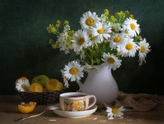 A bouquet of daisies and a cup of tea or coffee White Flowers, Beautiful Flowers, Daisy Love, Daisy Daisy, Flower Tea, Arte Floral, Ikebana, Still Life, Floral Arrangements