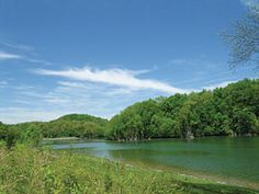 Warrior's Path State Park - Kingsport, Tennessee = reservoir, Holston River, playground, amphitheater, biking, boating, marina, water skiing, boat rentals, boat ramps, snack bar, camping, events & programs, fishing, golf, horseback riding, picnic tables & pavilions, swimming pool, disc golf