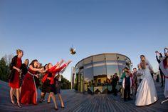 Hochzeitsfotografie by Norman Schätz Opera House, Wedding Photos, Reception, Bridal, Building, Travel, Wedding Photography, Marriage Pictures, Viajes