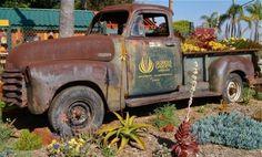 Glorious Gardens Nursery, Encinitas