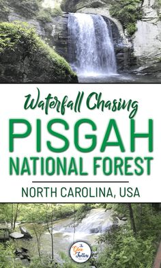 Don't miss out on these waterfalls during your North Carolina travels to Pisgah National Forest. Admire them from the road or just a short hike away. Either way, you will not be disappointed! Western North Carolina is known as the North Carolina Hiking, North Carolina Vacations, Asheville North Carolina, North Carolina Mountains, Waynesville North Carolina, North Carolina Waterfalls, Nc Mountains, Mark Twain National Forest, Daniel Boone National Forest