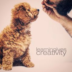 Learning Gives Creativity