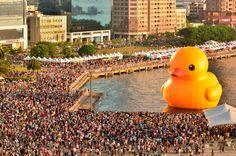 Rubber Duck refers to any of several giant floating sculptures designed by Dutch artist Florentijn Hofman.