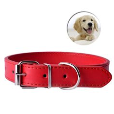 LDC011 Pu Leather Dog Collars with 11Colors for Small Dog and Pet Puppy Neck Strap //Price: $11.95 & FREE Shipping //     #Pitbulldog
