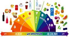 Sia chi soffre di cancro, che chi vuole prevenirlo, troverà molto utile queste informazioni. Indipendentemente [Leggi Tutto...]