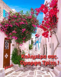 Good Morning Good Night, Amazing Places, Wonders Of The World, The Good Place, Tuesday, Cool Photos, Greece, Neon Signs, In This Moment