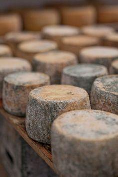 "~✿ڿڰۣ  Filoti Cheese, Naxos, Greece, local goat cheese which is the pride of this area in Greece.  Filoti cheese is also known as ""male"" It is a spicy, naturally aged cheese with strong flavor."
