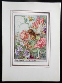 Sweet-Pea Flower Fairy Vintage Print, c.1950 Cicely Mary Barker Book Plate Illustration by TheOldMapShop on Etsy