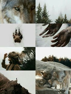 Hey there — Rustic Werewolf Aesthetic Snow Wolf, Wolf Wallpaper, Vampires And Werewolves, Aesthetic Collage, Character Aesthetic, Fantasy, Mythical Creatures, Spirit Animal, Aesthetic Wallpapers