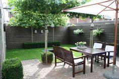 Afbeeldingsresultaat voor kleine tuin dakplantaan