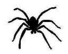 Šablona na tetování - pavouk