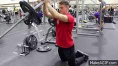 landmine_chest_press.gif (320×180)