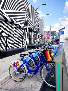 Things To Do in Miami || Guide to Wynwood Walls