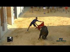 Toro nº56 de Luis Algarra. Massalfassar (11.07.2015).