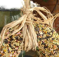 birdseed wreath - can pack into cookie cutters around a straw, too, for mini feeders!