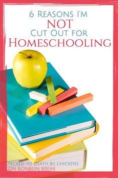 6 Reasons Im Not Cut Out for Homeschooling not homeschooling