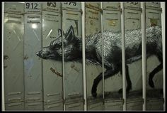 excellent idea for some old lockers
