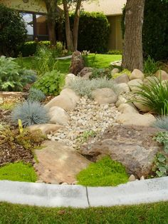 River Rock Design Ideas junipers holly boxwood and boxleaf euonymous give this river rock beach pebble and Xeriscapes Waterwise Landscapes Rock Garden Designgarden
