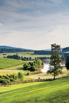 Virginia's Wine Country: Blenheim Vineyards
