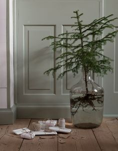 Christmas by Lotta Agaton - via cocolapinedesign.com