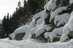 Snow on rocks Marmot Basin Alberta, Canada  (Photo by Anita, January 2011)