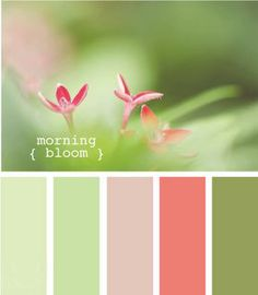 morning bloom Color Palette - Paint Inspiration- Paint Colors- Paint Palette- Color- Design Inspiration