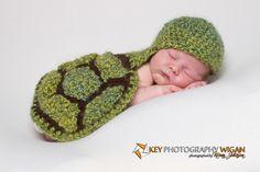 Little turtle baby