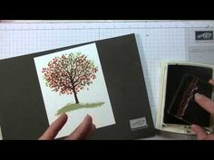 Stampin' Up! Sheltered Tree - YouTube