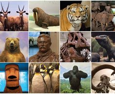 Images of American Museum of Natural History. Awesome!