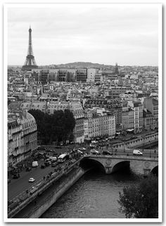 view of paris and the eiffel tower in black & white.  taken from atop notre dame... one of my favorite vantage points in the city!