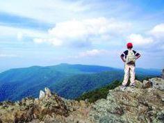 National Park Guide: Virginia's Shenandoah -
