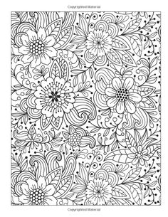 The Calm Coloring Book (Chartwell Coloring Books): Patience Coster: 9780785832881: Amazon.com: Books