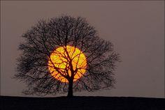 Zen mood by Sylvain Sester, via 500px
