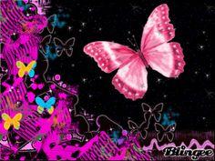 Le papillon - Bing Images